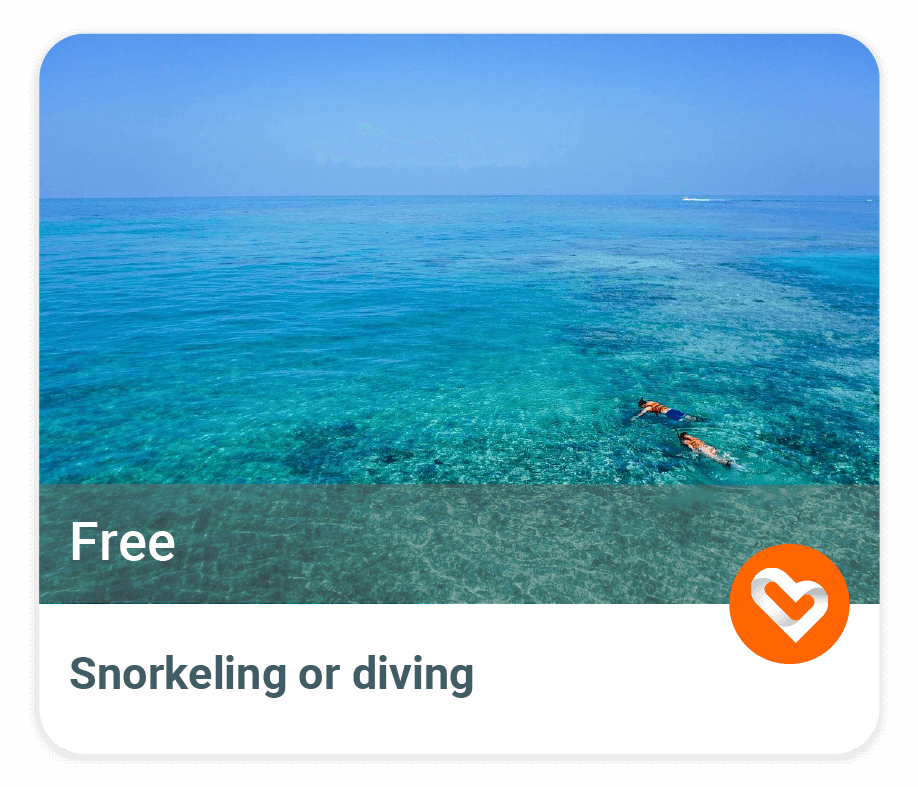 Snorkeling-and-diving link image