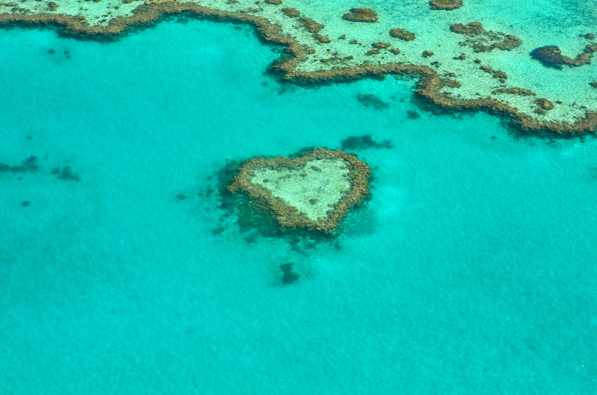 Heart reef in Great Barrier Reef
